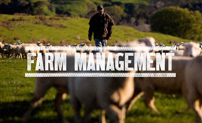 Whangara Farms - Farm Management