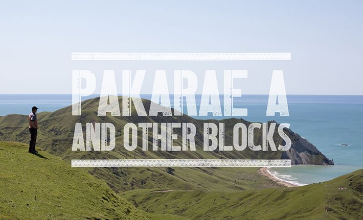 Whangara Farms - Pakarae A & other blocks
